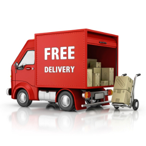 free delivery on zibro products